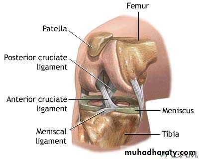 Knee disorders