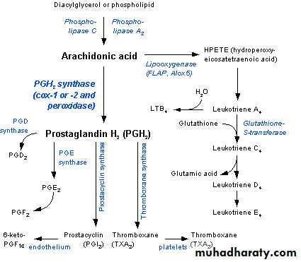 Autacoids and Autacoid Antagonists