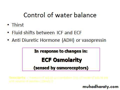 Fluid & Electrolyte